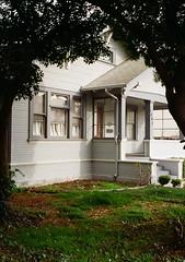 Santa Clara, California (bior) Tags: fujicahalf halfframe santaclara residential suburbs kodakgold kodakfilm tree gold200 house