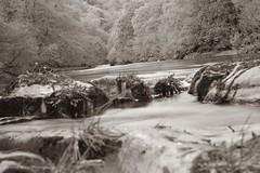 Hudswell forests richmond (danielbooth3) Tags: richmond visityorkshire visitrichmond river riverswale northyorkshire yorkshire walk walking blackandwhite