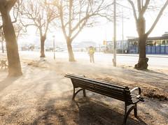Stockholm, April 25, 2019 (Ulf Bodin) Tags: bench stockholm strandvägen sverige leafblower streetphotography lövblåsning canonef1635mmf4lisusm allé blåsjobb sweden outdoor spring canoneosr thewalkwaypark urbanlife stockholmslän