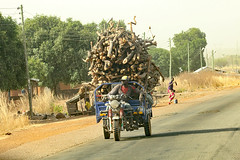 Transporting firewood northern Ghana (inyathi) Tags: africa westafrica ghana firewood transport
