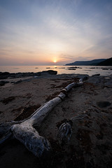 20190515A73_8039 (Gansan00) Tags: ilce7m3 α7ⅲ sony zeiss japan 山口県 yamaguchi 日本 landscape snaps ブラリ旅 5月 oohama 大浜海水浴場 fe1635mmf4 sea morning ocean sky sunset water beach rock sand bay