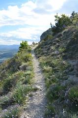 Sans suite... (RarOiseau) Tags: sentier montagne falaise picdecrigne monêtierallemont hautesalpes aphyllanthedemontpellier printemps