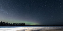 SK5_4576 (glidergoth) Tags: aurora auroraborealis birds finland finnature forest night snow stars utajarvi winter