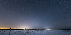 SK5_4575 (glidergoth) Tags: aurora auroraborealis birds finland finnature forest night snow stars utajarvi winter