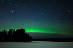 SK7_0739 (glidergoth) Tags: aurora auroraborealis birds finland finnature forest night snow stars utajarvi winter