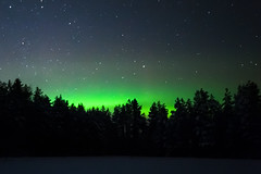 SK7_0743 (glidergoth) Tags: aurora auroraborealis birds finland finnature forest night snow stars utajarvi winter