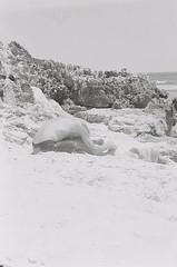 Beach 10 (adam_h_photo) Tags: halfframe olympuspenft monochrome film filmphotography 35mm analogue analog photofilmy ishootfilm istillshootfilm blackandwhite beach