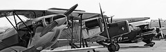 Une seule /Only one (ricardo 31) Tags: aircraft airplane avion aeronautique blagnac noiretblanc spotter spotting toulouse blackandwhite planespotting lfbo aeroport airport plane tls monochrome monomoteur helices