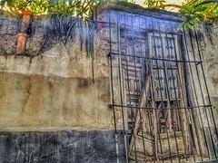 Yo también tengo ruinas,meses y años troceados (Mario Benedetti) (FOTOS PARA PASAR EL RATO) Tags: plantastrepadoras pared grietas viejo texturas muros ventanas ruinas tlalpan cdmx