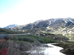 Alaska Scenery (R D C) Tags: 2012 ak denalinationalpark nationalparks alaska mountains