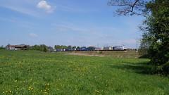 186 444 + 189 902 / Lokomotion - Rann (lukasrothmann) Tags: bayern oberbayern heimat rann groskarolienenfeld trains zug lok lokomotive lokomotion rtc 186 189 klv