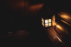 Canon EOS RP Review (Thousand Word Images by Dustin Abbott) Tags: eosrp photodujour 2019 canada canoneosrp canonrf35mmf18macroisstm canonrp chateaumontebello comparison dustinabbott fairmont mirrorless ontario pembroke petawawa photography quebec review test thousandwordimages dustinabbottnet montebello