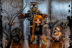 I need Space (Dotsy McCurly) Tags: adage flickrfriday adobe photoshop arttoys toyphotography robots droids starwars lostinspace canoneos80d efs35mmf28macroisstm bb8 bb9e