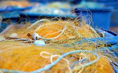 Une  histoire de filets ... (Eric DOLLET - Ici et ailleurs) Tags: ericdollet bretagne finistère roscoff