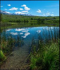 Intense Reflections (greenschist) Tags: trees plants alberta mountains water canada lake reflections jaspernationalpark clouds