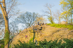 1379_0716FL (davidben33) Tags: spring 2019 new york manhattanstreetphoto street photos architecture people landscape cityscape buildings fashion women girls 718 5thave centralpark monument