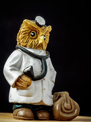 the doctor will see you now (wwnorm) Tags: figurines macro naturallight owls tabletop windowlight picaday2019