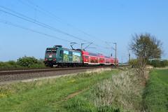 146 010 (nik Sentker) Tags: railway train dresden vvo wackerbarth schloss magdeburg burg braunschweig traxx br146