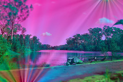 Slide (Dreaming of the Sea) Tags: sliderssunday hss tamronsp2470mmf28divcusd nikond7200 pinksky gumtrees water clouds 2019