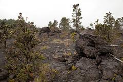 Mauna Ulu, Kilauea, Hawaii Volcanoes National Park, Hawaii (Roger Gerbig) Tags: maunaulu hawaiivolcanoesnationalpark kilauea volcano hawaii bigisland island rogergerbig canoneos5dmarkii canonef24105mmf4lisusm 3310