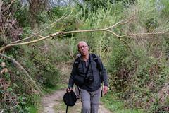 09-Le pyrénéen en difficulté (Alain COSTE) Tags: 2019 forêt hautevienne lavarache limousin nikon ocb printemps randonnée eymoutiers france