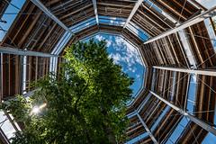 Baumwipfelpfad im Steigerwald 5686 (Peter Goll thx for +13.000.000 views) Tags: d850 deutschland nikon sonne himmel germany 2016 bayern clouds sun ebrach backlight steigerwald gegenlicht sky 1424mm nikkor baum wolken baumwipfelpfad