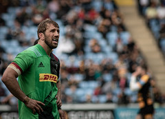Chris Robshaw (davidhowlett) Tags: ricoharena quins wasps coventry waspsrugby gallagher ricoh rugbyunion pre rugby iership harlequins