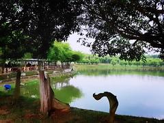 Restoran Fish Valley Semenyih Semenyih PT 16367, Fish Valley Semenyih, Sri Haneco Industrial Park, Jalan Kachau, Selangor https://maps.app.goo.gl/HPecD  https://foursquare.com/soonlung81  https://maps.app.goo.gl/CPWsi  https://www.instagram.com/s/aGlnaGxp (soonlung81) Tags: reizen semester 여행 viaggio malaysia vakantie lake holiday asian 馬來西亞 การเดินทาง see 휴일 trip fiesta 湖 vacances ทะเลสาป озеро tasik بحيرة سفر 亞洲 путешествие tree 度假 旅行 voyage lago lac عطلة праздник vacanza resa asia วันหยุด meer ホリデー viaje 호수 reise urlaub travel sjö