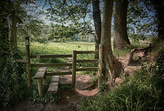 footpath (amazingstoker) Tags: foot basingstoke hampshire footpath countryside post dogmersfield sign country canal walk path magic enchanted mystical painterly tree grass wood field stmary virgin church winchfield saint mary bucolic stile