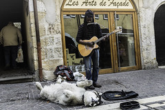 Annecy: Who is the street artist? - Annecy: chi è l'artista di strada? (58lilu58) Tags: streetphoto streetphotography street artist streetartist annecy france francia artistidistrada dog cane canon canon760d