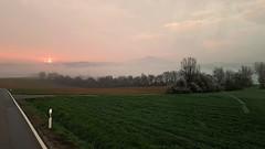 Aus dem Führerhaus aus (johannroehrle) Tags: natur nature natura nebel niebo landscape landschaft landstrasse sonnenaufgang