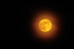 May 2019 Blue Moon (Tim Aldworth) Tags: moon luna lunar cloud bluemoon may2019 canoneos7d ef70300mmf456lis nightsky fullmoon uk tripod