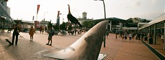 4360-20 (stevenwonggggg) Tags: xpan hasselblad fuji film industrial100 urban skyline skateboard