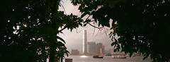 添馬 (stevenwonggggg) Tags: xpan hasselblad fuji film industrial100 urban skyline analog fog