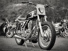 Yamaha 500 (gnarlydog) Tags: australia motorcycle vintagelens vintage manualfocus adaptedlens canontv1650mmf14 subjectisolation swirly yamaha bokeh