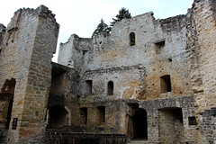 Beaufort Castle (demeeschter) Tags: luxembourg mullerthal beaufort befort castle architecture building old ruin heritage historical medieval forest tree rocks animal wildlife lizard