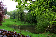 The Pond in Beaufort (demeeschter) Tags: luxembourg mullerthal beaufort befort castle architecture building old ruin heritage historical medieval forest tree rocks animal wildlife lizard