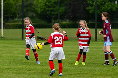 11s v Stenhousemuir 19 May 2019-34 (Hamilton Academical WFC) Tags: 11s 2019 accies hamiltonaccies hamiltonpalacesportsground scottishwomensfootball