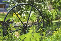 Old Chichester Canal Lock Wheel (Chris Lawrence Photos) Tags: marina coast chichester birdham canal lock wheel vintage bush