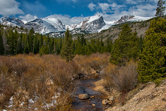 Spring is Coming (RkyMtnGrl) Tags: landscape nature scenery willow mountains pines creek halletpeak stormpasstrail spring snowcapped rmnp rockymountainnationalpark colorado 2019