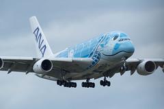 JA381A (edo420) Tags: d5 500mmf56 airplane 飛行機 さくらの山 narita 成田 chiba 千葉 airbus エアバス a380 ja381a 全日空 ana pflens pfレンズ japan