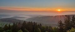 Sunrise seen from the Mahlberg Observation Tower (Markus Semmler) Tags: sunrise dawn mist fog mountains valley mahlberg blackforest woods forest clouds morning sunbeams sunstar trees schwarzwald observationtower mahlbergturm wald forst