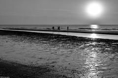 2+2+1 (fhenkemeyer) Tags: netherlands denhaag scheveningen people sun landscape seascape beach sunset