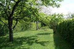 (BS-Foto) Tags: leica leicavlux leicavlux1 vlux1 vlux grün green vert verde garten garden