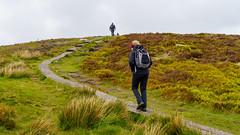 Upward March (andrewsc) Tags: sel24105g a7iii djouce sony roundwood countywicklow ireland
