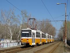 A 14M villamos a Szilágyi utcában (Torontáli Krisztián) Tags: villamos vehicle tram transport tramway tatra t5c5 t5c5k2 railroad outdoor budapest publictransport strassenbahn streetcar