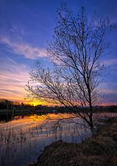 Sunset, Norway (Vest der ute) Tags: norway rogaland haugesund skeisvatnet water waterscape landscape lake reflections tree sky clouds evening foliage houses fav25 fav200