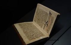 Tratado de Medicina, Cirugia Espana (dsancheze) Tags: book libro tratadomedicina medicina espana alqasim egipto egypt surgery cirugia
