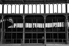 A los pies de Barcino (Osruha) Tags: mercadodelborn born barcelona barna bcn cataluña catalunya catalonia españa espanya spain ruinas ruïnes ruins mercado mercat market hierro ferro iron arquitectura architecture blancoynegro blancinegre blackandwhite bw bn historia history nikon nikonistas nikond750 d750
