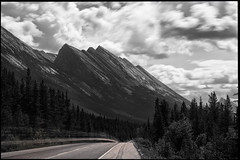Dipping (greenschist) Tags: 20seconds road geology forest alberta mountains canada jaspernationalpark clouds